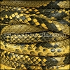 Mini Regaliz® PYTHON leather YELLOW - per 1 meter